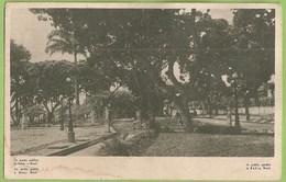 Salvador Da Bahia - Jardim Público - Brasil - Salvador De Bahia
