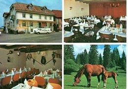 Hôtel Bellevue Saignelégier - Non Circulé  (Carte Grand Format) - JU Jura
