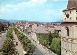 D1265 Romania Campulung Muscel - Rumänien
