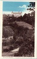 38 - VIRIEU Sur BOURBRE --  Vieux Château - Virieu