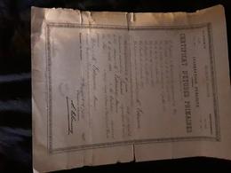 Certificat D'Etudes Primaires , Académie D'AIX , VAR , . Marius Estienne Né à La  Cadiere . 1897 - Diploma & School Reports