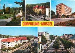D1266 Romania Campulung Muscel - Rumänien