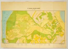 1978 A Tihanyi Gejzírmez? Térképe, ELTE Térképtudományi Tanszék, 70×99 Cm - Other Collections