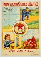 Cca 1949 'Magyar Szabadságharcos Szövetség Sportbemutatója', Nagyméret? Plakát, Szélein és A Hajtások Mentén Kis Szakadá - Other Collections