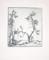 Ex-libris Moderne XXème Illustré -  Allemagne - Couple Dans Un Paysage Au Bord De L'eau - Hans U Liesel LAUT - Bookplates
