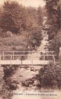 58 - Arleuf - L'Yonne Au Moulin Des Morvan - France