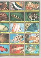 Ajman CTO Part Sheet 1972 Fish Stamps Very Large Size - Ajman