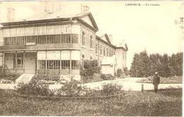 LIERNEUX  ---  La Colonie - Lierneux