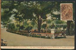 °°° 10993 - CILE CHILE - VALPARAISO PARQUE MUNICIPAL - 1913 With Stamps °°° - Cile