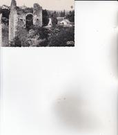 CPA 86 LUSSAC-LES-CHATEAUX ,Pont-Levis De L'ancien Château. - Lussac Les Chateaux