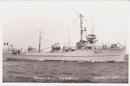 Dragueur        14       Dragueur CAMELIA - Warships