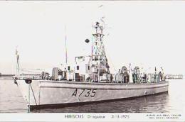 Dragueur        24       Dragueur HIBISCUS - Warships