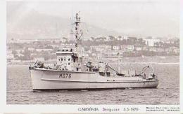 Dragueur        27       Dragueur GARDENIA - Warships