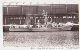 Dragueur        56        Dragueur DAHLIA - Warships