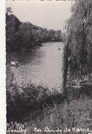 NEUILLY SUR MARNE :CPSM.P.F.CRANTEE DE1954.LES BORDS DE LA MARNE.B.ETAT.PETIT PRIX.COMPAREZ!!! - Neuilly Sur Marne