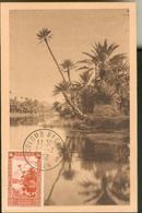 Carte Maximum -  Colom Béchar - L'Oued Dans L'oasis - Algérie