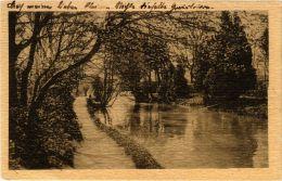 CPA FISCHAMEND Partie In Der Kleinen Au AUSTRIA (675660) - Fischamend