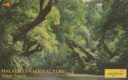 Malaysia - Taman Negara Park - 118USBC - Malaysia