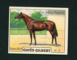 CAFÉS GILBERT S 18 / N°2 - CHEVAUX - PUR SANG ANGLAIS - Thé & Café