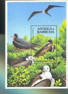 ANTIGUA & BARBUDA   1856 MINT NEVER HINGED SOUVENIR SHEET OF BIRDS    ( - Zonder Classificatie