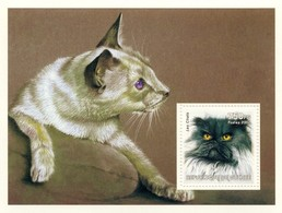 Guinea 2002, Animals, Cat, BF - Guinea (1958-...)