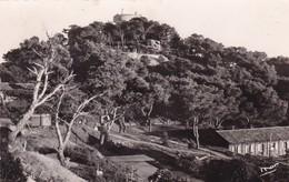 83 / PORQUEROLLES / FORT STE AGATHE / CIRC 1951 - Porquerolles