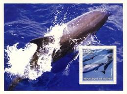 Guinea 2002, Animals, Dolphins, BF - Guinea (1958-...)