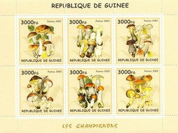 Guinea 2002, Mushrooms, 6val In BF - Guinea (1958-...)