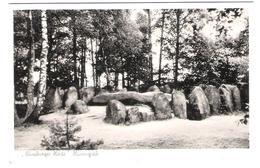 Germany - Lüneburger Heide - Hünengrab - Dolmen - Dolmen & Menhire