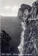 Lago Di Garda - Strada Gardesane - Occidentale - 220 - Formato Grande Viaggiata Mancante Di Affrancatura – E 5 - Brescia