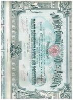Action Ancienne - Sté Minière Et Coloniale De L'Ouest-Africain - Titre De 1908 -  N°6393 - Afrika