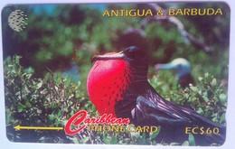 14CATB Frigate Bird $60 - Antigua And Barbuda