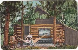 A Summer Cabin In The Mountains, Near Seattle  - (WA., USA)  - 1910 - Seattle