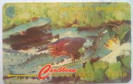 104CATC Masked Duck $20 - Antigua And Barbuda