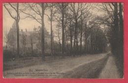 Westerlo - Buitengoed Der Weledele Mejuffrouw Jeanne De Merode  -1925 ( Verso Zien ) - Westerlo