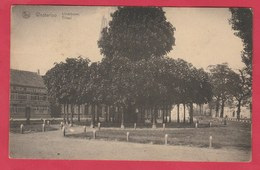 Westerlo - Lindeboom  -1925 ( Verso Zien ) - Westerlo