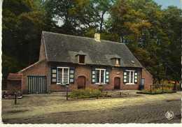 Belgium > Antwerp - Gravenwezel - De Brakken - Houte/house/ - Andere