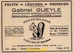 GABRIEL GUEYLE   / FRUITS LEGUMES ET PRIMEURS / NOIX  MARQUE L' ECUREUIL / CARPENTRAS / VAUCLUSE / PUB 1936 - Vecchi Documenti