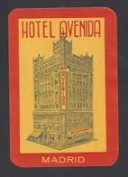 étiquette Valise  -   Hôtel  Avenida  à  Madrid  Espagne - Hotel Labels