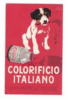CARTOLINA PUBBLICITARIA  MAX MEYER & C. MILANO  COLORIFICIO ITALIANO  Illustratore TERZI - Pubblicitari