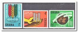 Ghana 1963, Postfris MNH, Fight Against Hunger - Ghana (1957-...)