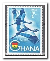 Ghana 1959, Postfris MNH, Birds ( 2 High Values ) - Ghana (1957-...)