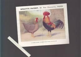 Aviculture - Couveuse Hearson, éleveuses, Nourritures Volailles, Oeufs, - Spratt's Patent Rue Caumartin Paris - Publicités