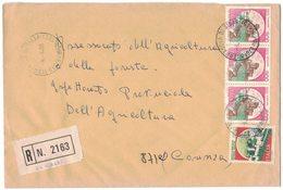 QS67   Storia Postale 1988 Racc.da Terranova Di Sibari Per Cosenza Castelli £.650 + £.800 X3 - 1946-.. République
