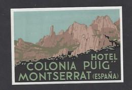 étiquette Valise  -  Hôtel Colonia Puig à  Montserrat    Espagne - Hotel Labels