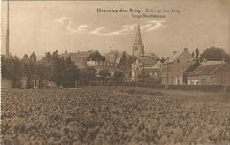 Zicht Op Den Berg Langs Boschestraat - Heyst-op-den-Berg - Heist-op-den-Berg