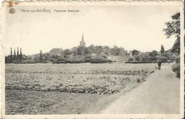 Panorama Westzijde. - Heist-op-den-Berg - Heist-op-den-Berg
