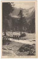 PONTEDILEGNO Malga Di Valbione FP Viaggiata 1938 X La Germania - Italia