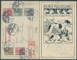 GANZSACHEN K 12 BRIEF, 1901, 10 Pf. Germania, Einschreibkartenbrief Mit Sonderstempeln HEIDELBERG HUNDE- UND SPORTAUSSTE - Deutschland