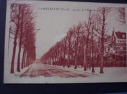 Lambersart - Avenue De L'Hippodrome. - Lambersart